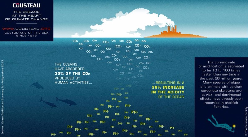 The ocean at the heart of climate change